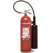 Badger 5 lb CO2 Extinguisher w/ Wall Hook
