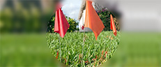 Why To Use Marking Flags And Call Before You Dig