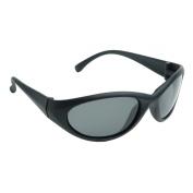 Radians Cobalt Safety Glasses - Smoke Frame - Polarized Smoke Lens